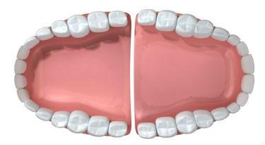 Dentures   Dr Price   DC Dentist